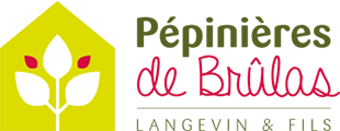 Pépinières de Brulas Logo